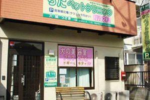 神奈川県相模原市 ちだペットクリニック