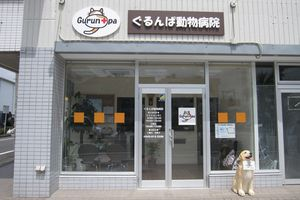 神奈川県相模原市中央区 ぐるんぱ動物病院