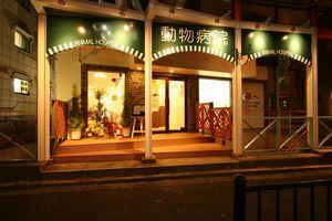 大阪府豊中市 ロマンチック街道どうぶつ病院