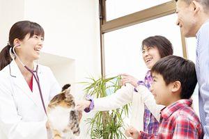神奈川県川崎市中原区 みつはし動物病院