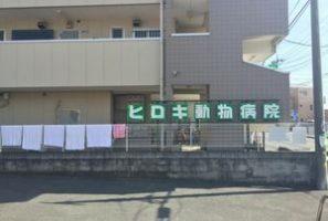 埼玉県志木市 ヒロキ動物病院