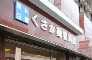 埼玉県朝霞市  くさか動物病院