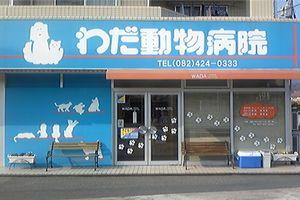 広島県東広島市 わだ動物病院