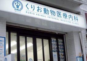 横浜市中区 くりお動物医療内科