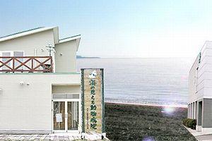 北海道函館市 オオツ動物病院