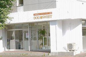 札幌 ドッグスウィート