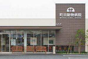 東京都青梅市 町田動物病院