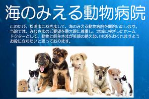 長崎県 海のみえる動物病院