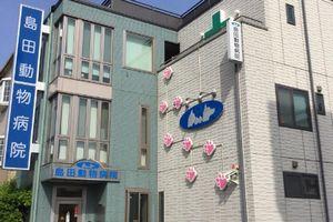 兵庫県神戸市西区 島田動物病院