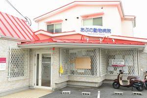 大阪府高槻市 あぶの動物病院