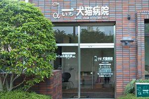 大阪市北区 一犬猫病院