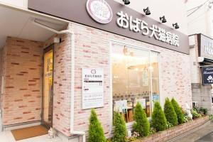 東京都大田区 おばら犬猫病院