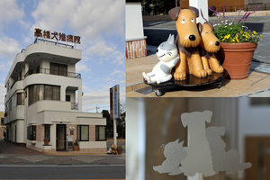 埼玉県さいたま市 高橋犬猫病院