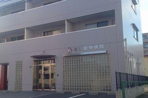 兵庫県西宮市 安田動物病院