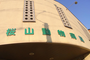 愛知県名古屋市昭和区 桜山動物病院