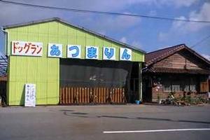 愛知県碧南市 あさおか動物病院