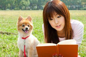 北海道滝川市 子犬とサロン ドッグ・ワン