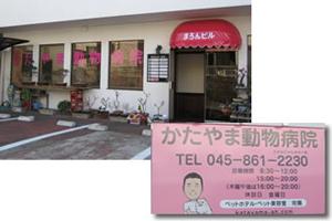 横浜市戸塚区  (株)かたやま動物病院