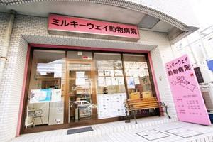 神奈川県横浜市南区 ミルキーウェイ動物病院