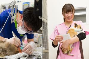 名古屋市守山区 もりやま犬と猫の病院