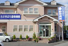 栃木県宇都宮市 さかきばら動物病院