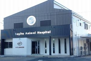 埼玉県白岡市 すぎた動物病院