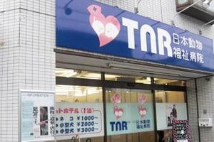 川崎市川崎区 TNR日本動物福祉病院