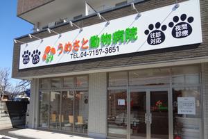 千葉県野田市 うめさと動物病院