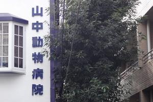 東京都中野区 山中動物病院 獣医師募集