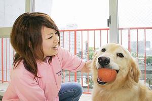 学校法人野上学園 ブレーメン愛犬クリエイティブ専門学校