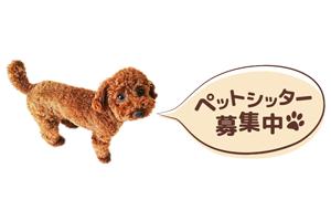 東京都・神奈川県 ・埼玉県 株式会社ペチカ(ペチカシッター)