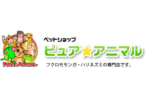 東京都大田区 ペットショップ ピュア☆アニマル
