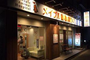 京都市上京区 メイプル動物病院