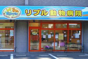 川崎市麻生区 リプル動物病院