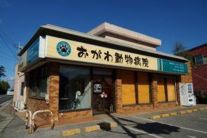 千葉県八街市 おがわ動物病院 動物看護師募集!新卒・未経験者歓迎