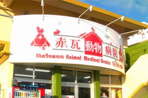 沖縄県八重瀬町 赤瓦動物病院