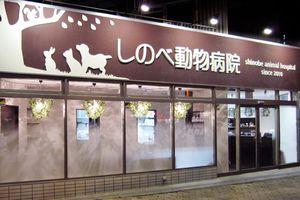 大阪市東成区 しのべ動物病院