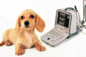 有限会社メディック 医療機器・器具・用品の配達及び販売