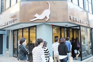 江東区森下 東京猫医療センター