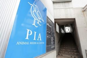 横浜市鶴見区 ピア動物医療センター