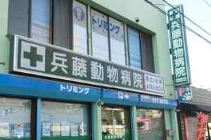 兵藤動物病院 保土ヶ谷橋