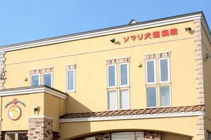 ソマリ犬猫病院 獣医師、動物看護士、トリマー募集!札幌市清田区