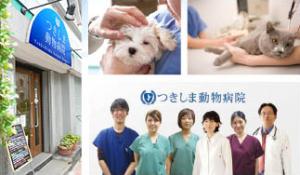 つきしま動物病院 獣医師、募集中!東京都中央区月島