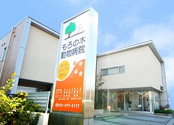 もろの木動物病院 名古屋市緑区 クリーンスタッフ急募!