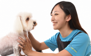 DOG FREAKS 神奈川県綾瀬市 座間市