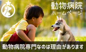 動物病院のホームページ制作