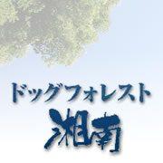 ドッグフォレスト湘南 神奈川県平塚市