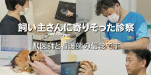 エキゾチックペットクリニック 動物看護師 神奈川県相模原市中央区