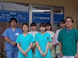 タブチ動物病院 動物看護師募集!埼玉県川越市