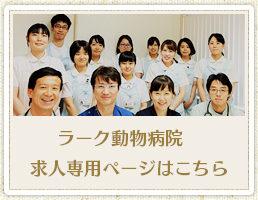大阪府寝屋川市 ラーク動物病院です!